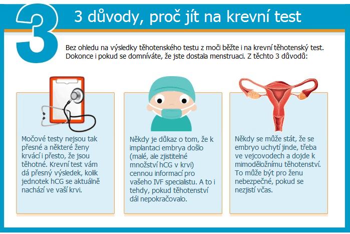 výsledek těhotenského testu